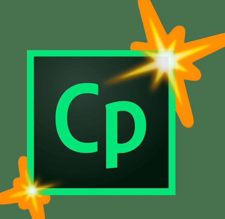 Adobe Captivate Consultant